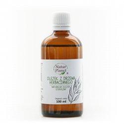 NaturPlanet, olejek z drzewa herbacianego 100%, 100ml